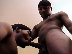 Two attractive black gay friends taste each other's dicks and asses
