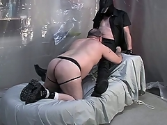 Fat dude upstairs his knees with an increment of giving a blowjob