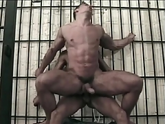 Stunningly supply masculine gay guy ass fucked