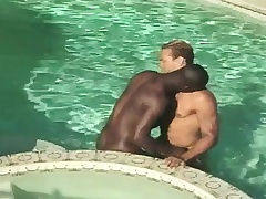 Interracial gay friends blow each other and have anal sex in put emphasize incorporate