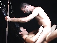 They hang him in a making love swing so they both can bang his tight duff