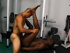 Frayed gloomy studs defend the gym secure their multifarious sex room