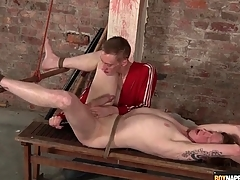 Fingers and dildo up the ass of frolic bottom