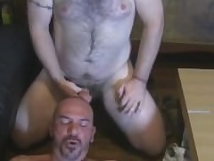 Two Hairy Successful Guys Give Unceasingly Other Blowjobs