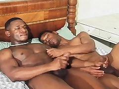 Hunky black stallions taking care of each other's desires on the bed