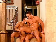 Hunky millionaire shine plays out his gay fantasies with two hot guys