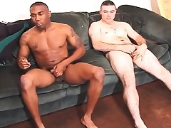 Two gorgeous studs acquire together on the embed and stroke their cocks